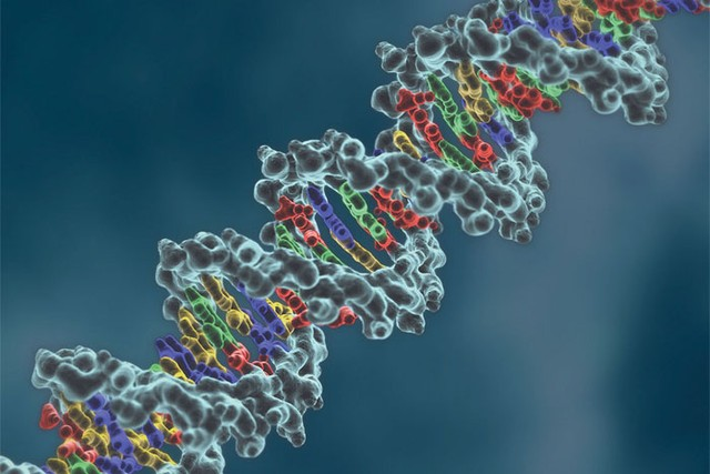 1-gene-20therapy-1402476508664.jpg