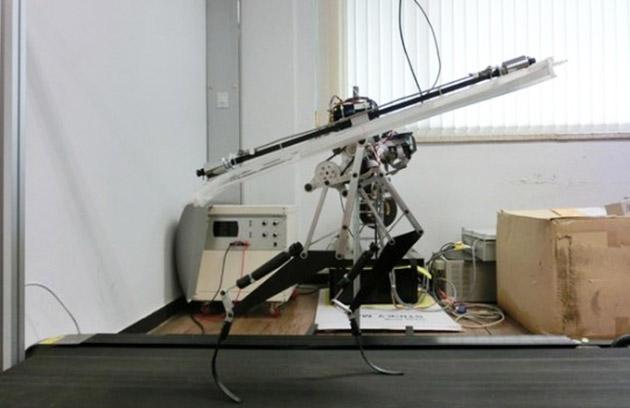 1-velociraptor-robot-1401575227053.jpg